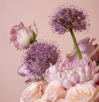Flowerbag-Cottoncandy-Absolutaflora03