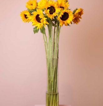 ramo-girasoles-absolutaflora