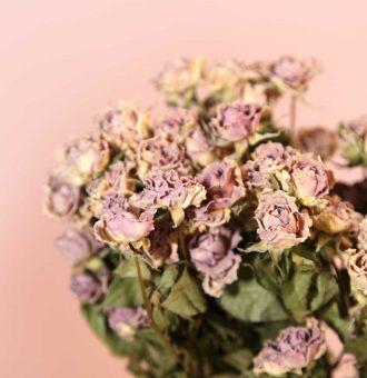 ramo-seco-rosas-mini-lavanda-absolutaflora02